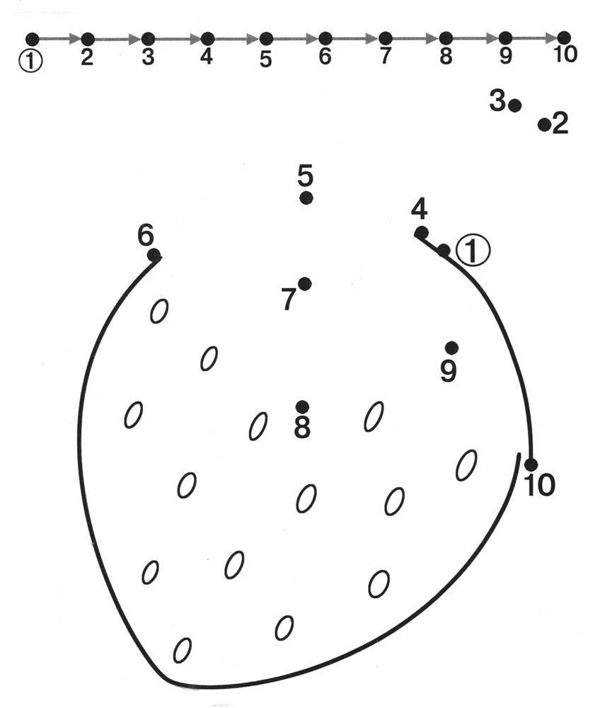 Dot To Dot Printables Free |  Free Dot To Dot Worksheets