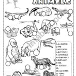 Jungle Animals Worksheet   Esl Worksheetineta