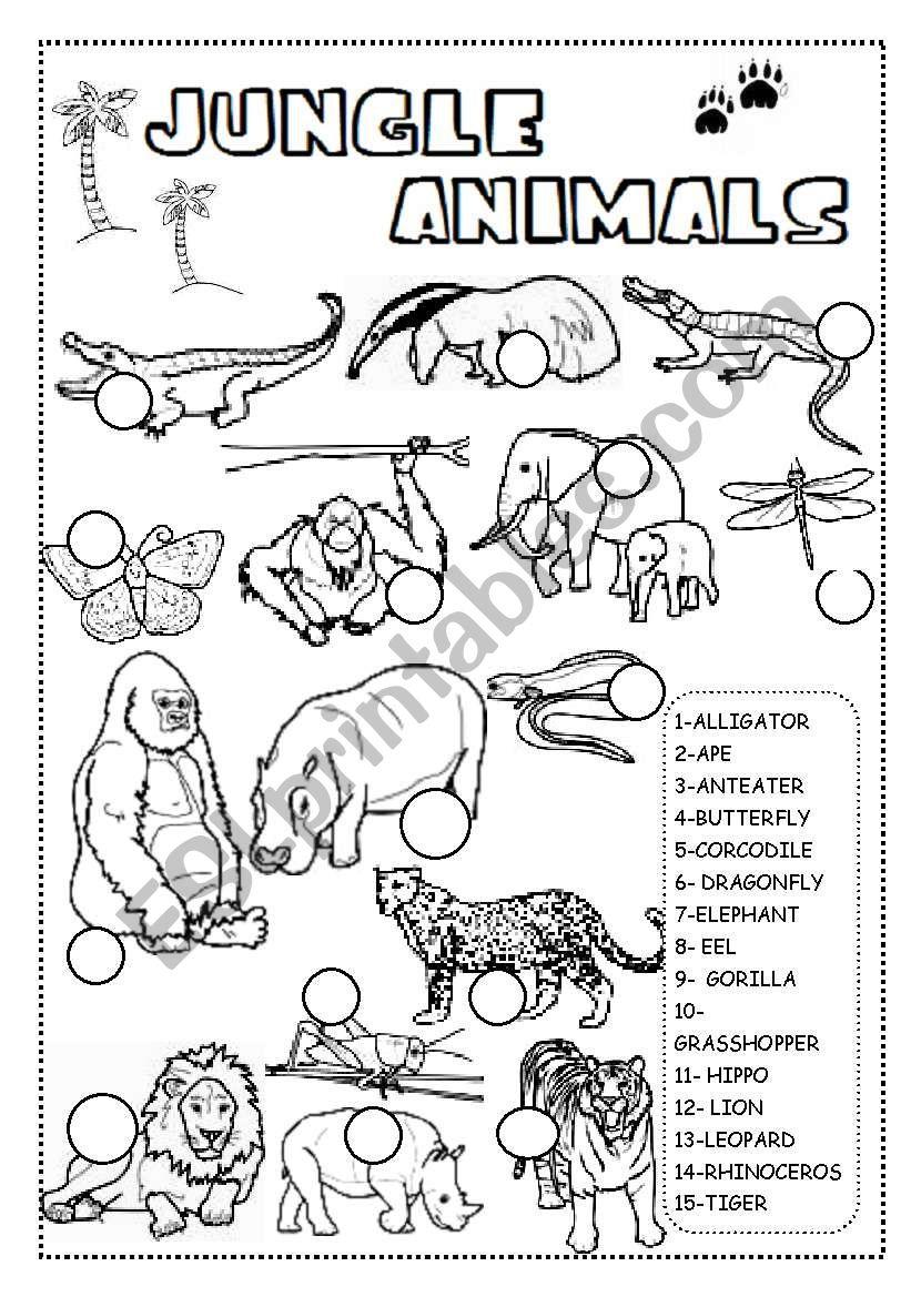 Jungle Animals Worksheet - Esl Worksheetineta