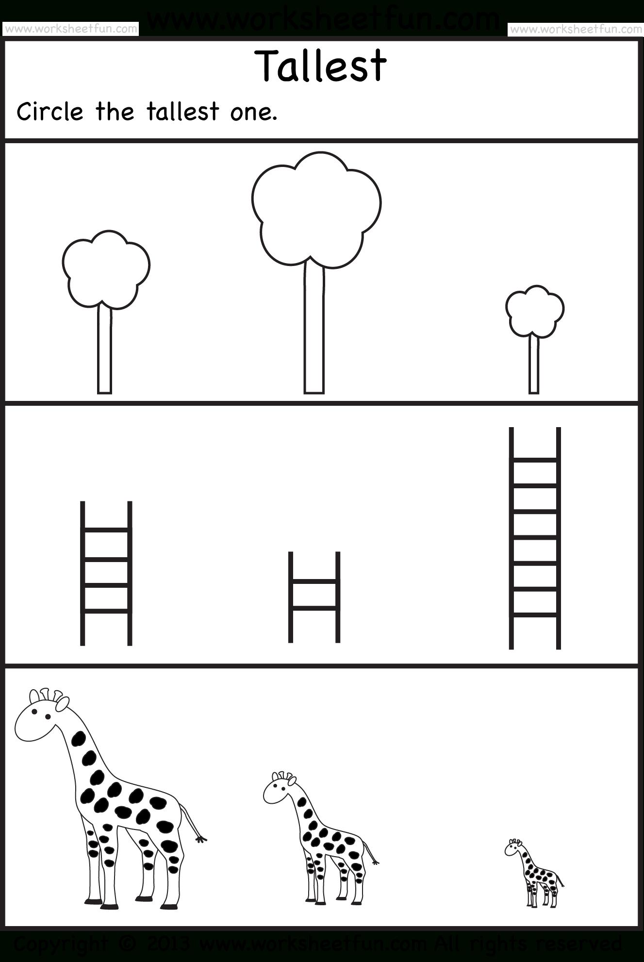 Kindergarten Worksheets   Tallest – 2 Preschool Worksheets
