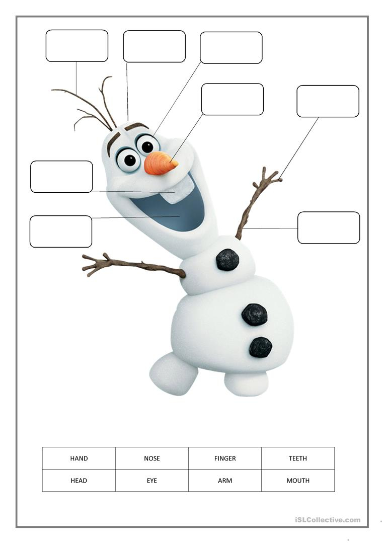 Parts Of The Body Worksheet For Kids - English Esl