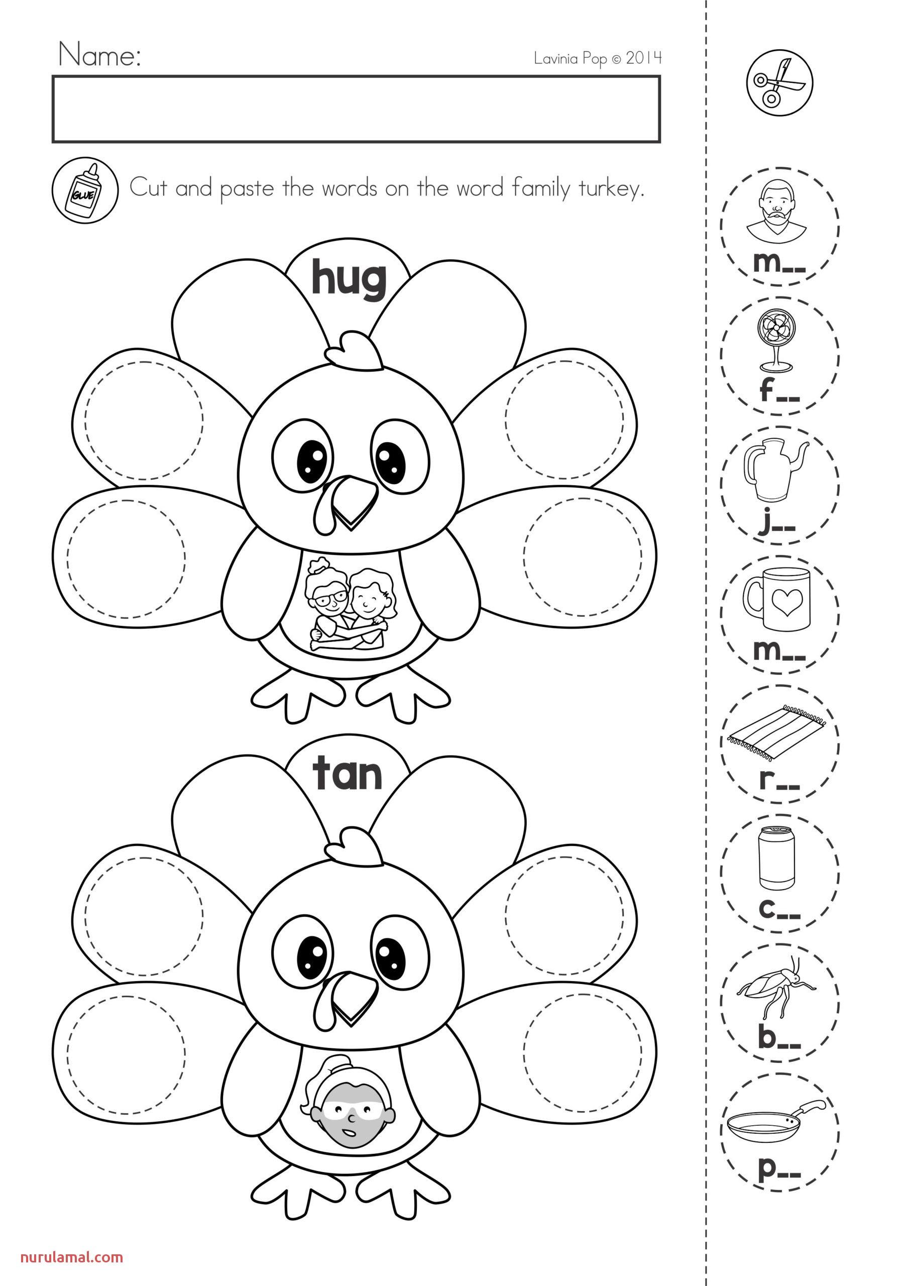 Preschool Worksheet About Brain Printable Worksheets And