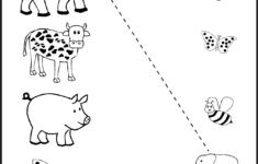 Preschool Worksheets Games
