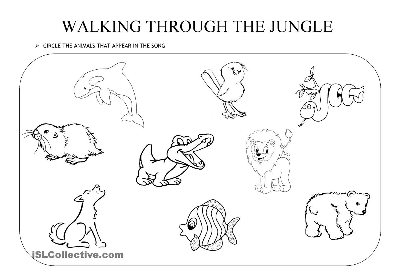Walking Through The Jungle | Jungle Activities, Animal